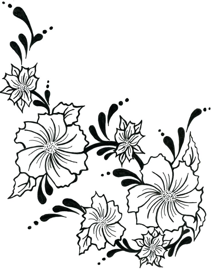 736x938 drawing flowers easy easy flower drawing flowers drawing easy rose