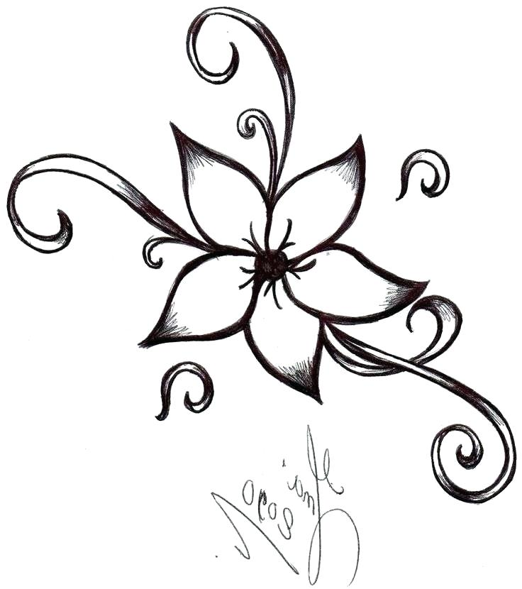 Steps Drawing A Rose Free Download Best Steps Drawing A