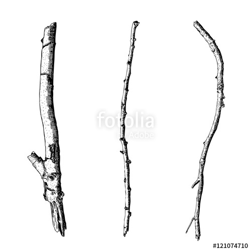 500x500 Hand Drawn Twig Branches Set Ink Illustration Wood Twig