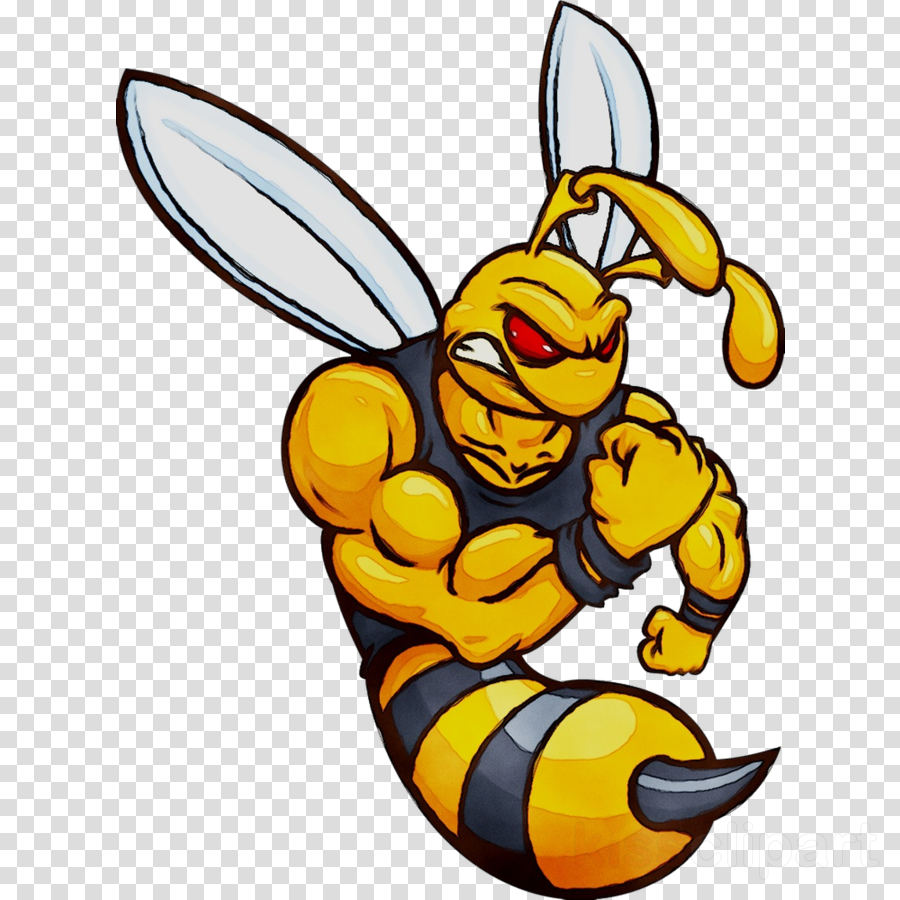 900x900 Bee, Drawing, Sticker, Transparent Png Image Clipart Free Download