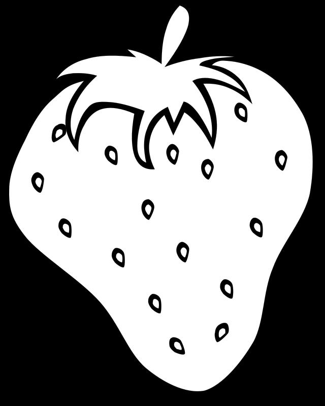 Strawberry Vine Drawing