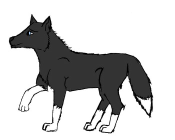 350x280 Strike The Black And White Twili Wolf This Is One Of My