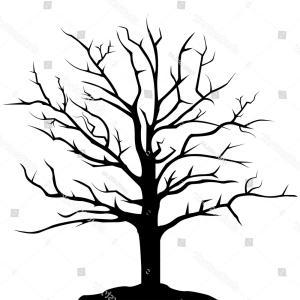 300x300 old oak tree drawing stylized drawing big old oak tree stock