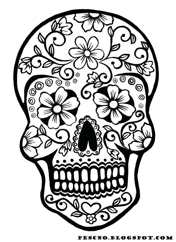 736x1012 Sugar Skull Drawing