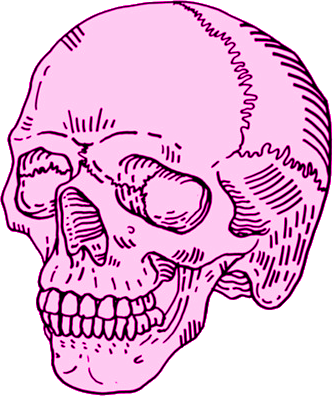 Sugar Skull Drawing Tumblr