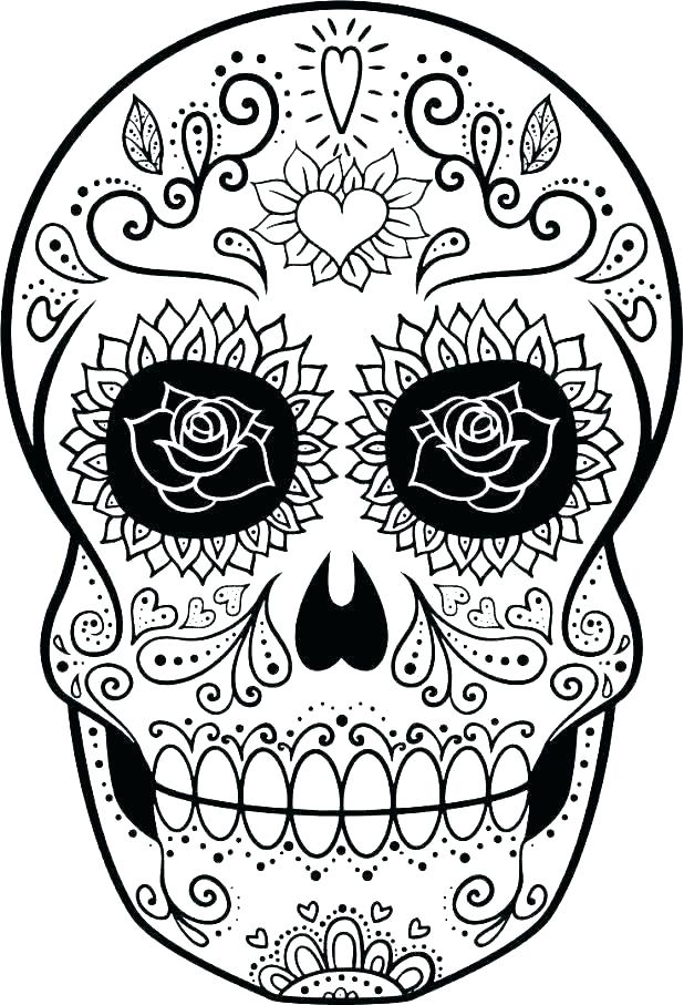 618x907 Face Skull Diagram
