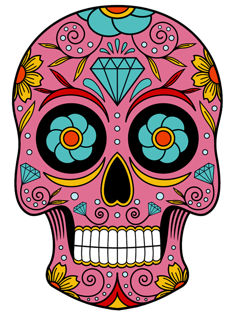 768x1024 Observation Drawing Skull Transparent Png Clipart Free Download