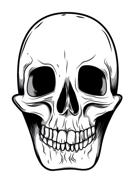 448x600 Skeleton Face Clip Art Mean Skull Drawings Good Ideas
