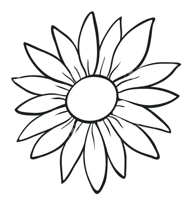 671x714 sunflower outlines sunflower black and white sunflower outline