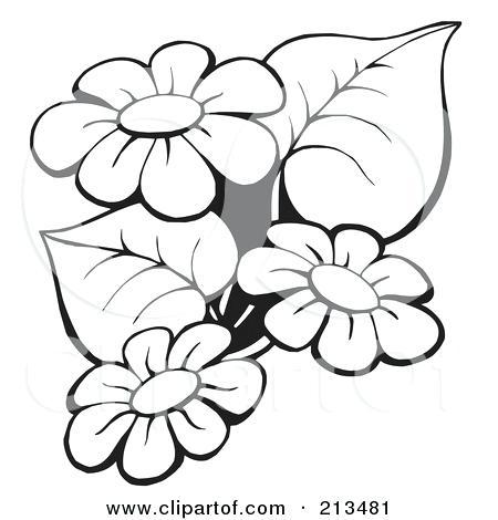 450x470 flowers outline outline of flowers outline flowers outline flowers
