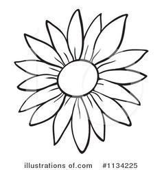 Sunflower Outline Drawing | Free download on ClipArtMag