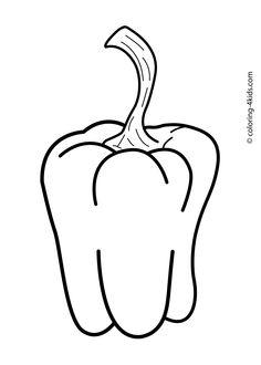 Susan B Anthony Drawing
