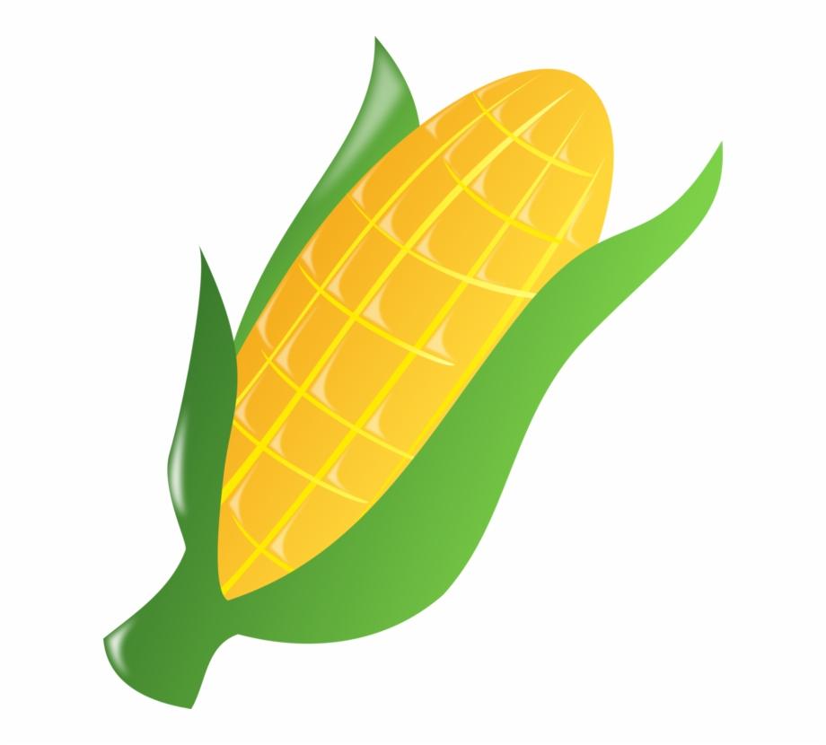 920x830 Corn On The Cob Caramel Corn Maize Sweet Corn Popcorn
