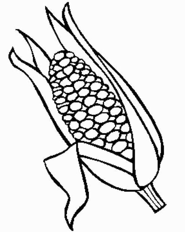 600x752 Sweet Corn Food Coloring Pages Bulk Color