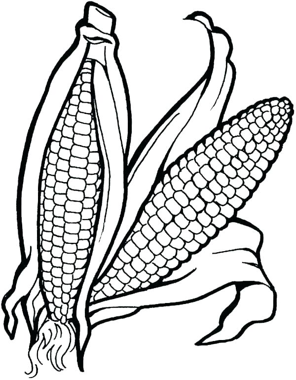 600x770 Corn For Coloring Running