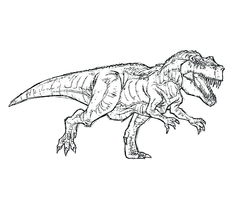 T Rex Dinosaur Drawing Free Download Best T Rex Dinosaur