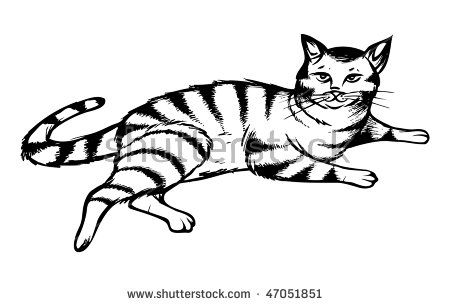 450x306 Image Result For Easy To Draw Tabby Cat Cartoon Things To Draw