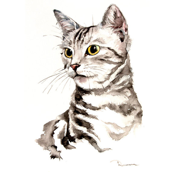 570x570 personal cat portrait, custom portrait cat, pet portrait, dog