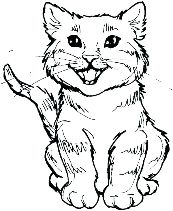600x731 Tabby Cat Coloring Pages Tabby Cat Coloring Pages Learn How