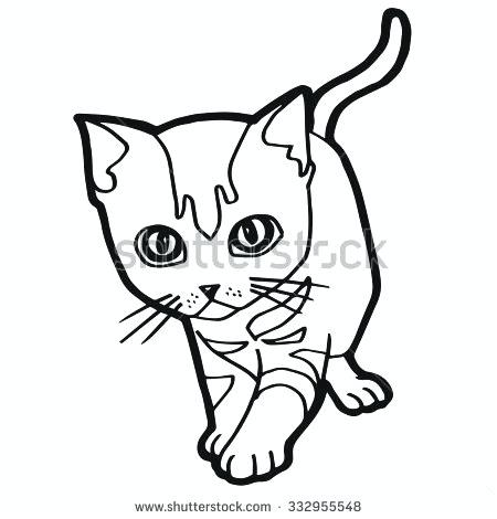 450x470 Tabby Cat Coloring Pages Tabby Cat Coloring Pages Little Sheets