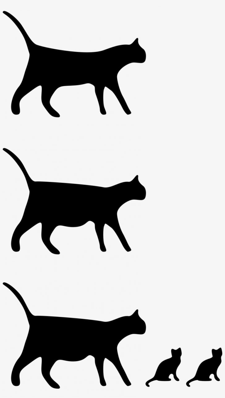 728x1286 Black Cat And Girl Drawing Tabby White Angry Pictures Anime