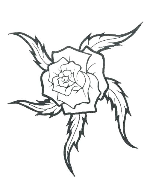 501x649 Rose Tattoo Outlines Rose Tattoo Outline Free Design Ideas Flash
