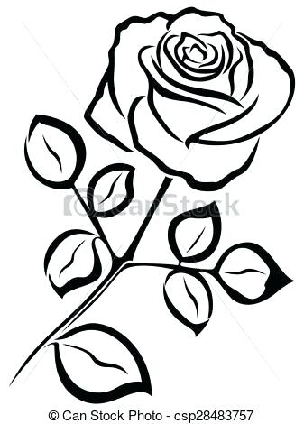 337x470 Simple Rose Outline Easy Drawing Roses Download
