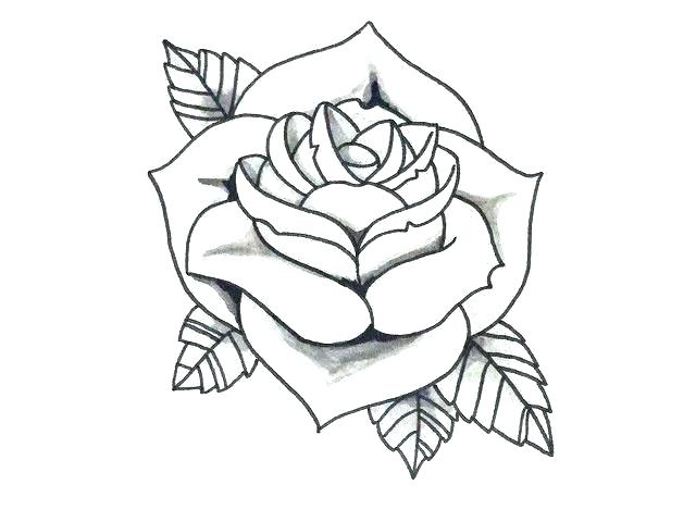 640x480 A Simple Rose Drawing