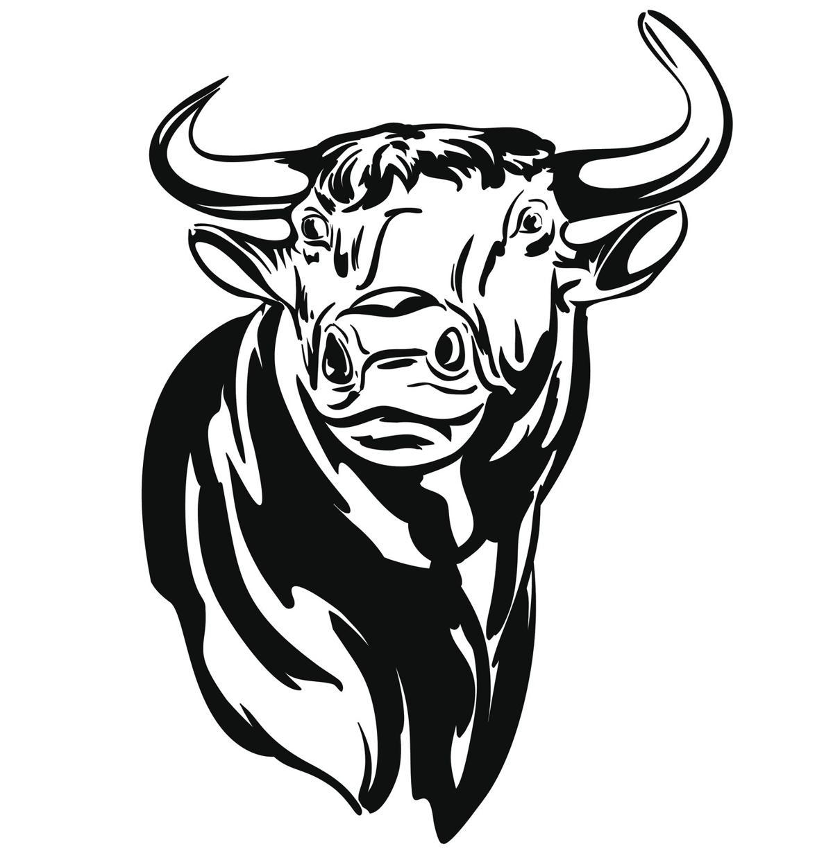 Taurus Bull Drawing