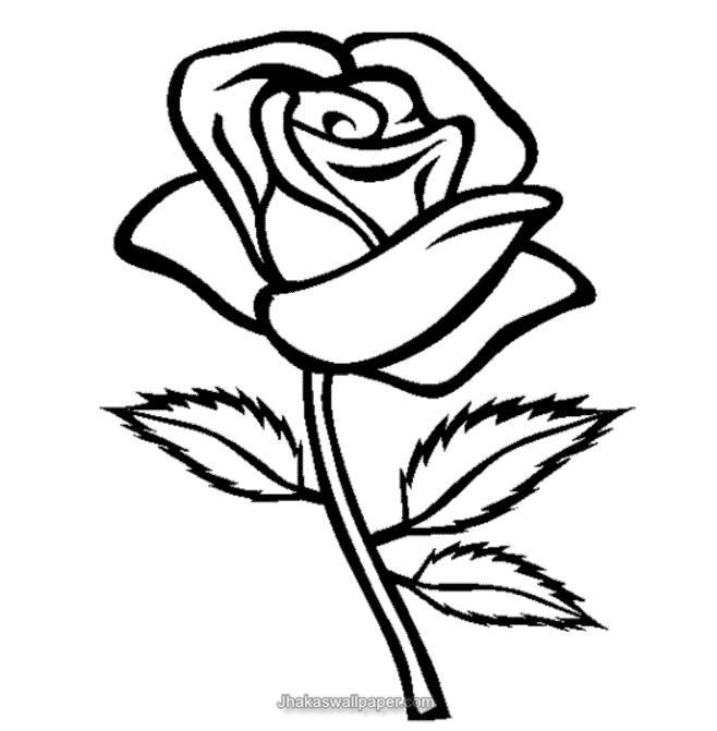 The Real Drawing Of Rose From Titanic