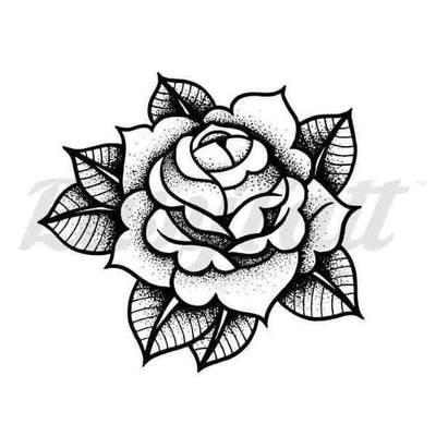 Three Roses Drawing