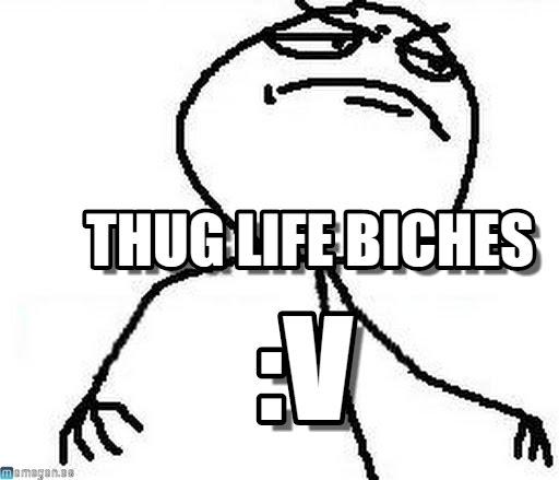 512x439 Thug Life Biches
