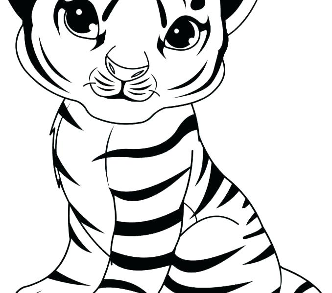 Tiger Drawing For Kids Free Download Best Rhclipartmag: Tiger Coloring Pages Easy At Baymontmadison.com