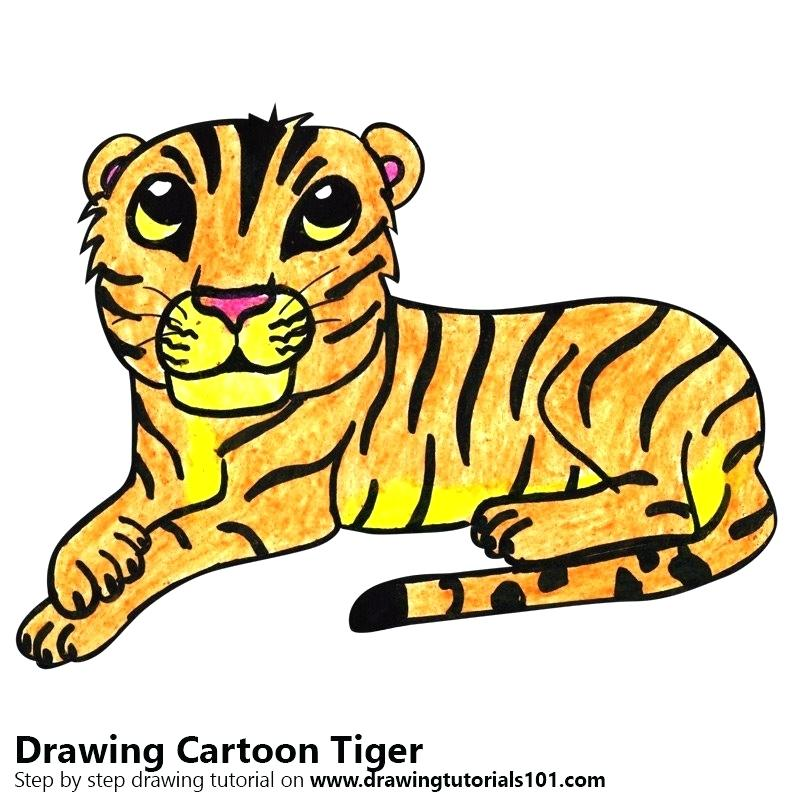 800x800 tiger pictures to colour in tiger colour drawing