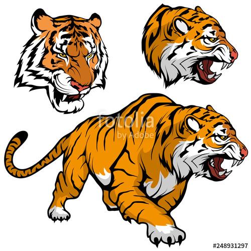 500x500 bengal tiger set suitable as logo for team mascot, royal tiger