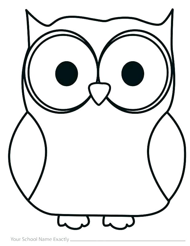 618x800 Owl Drawing Outline Owl Drawing Template Strand Definition Biology