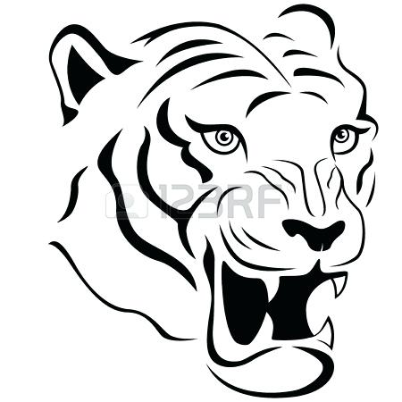 450x450 Part Of Funny Tiger Face Hand Drawing Vector Outline Isolated Free