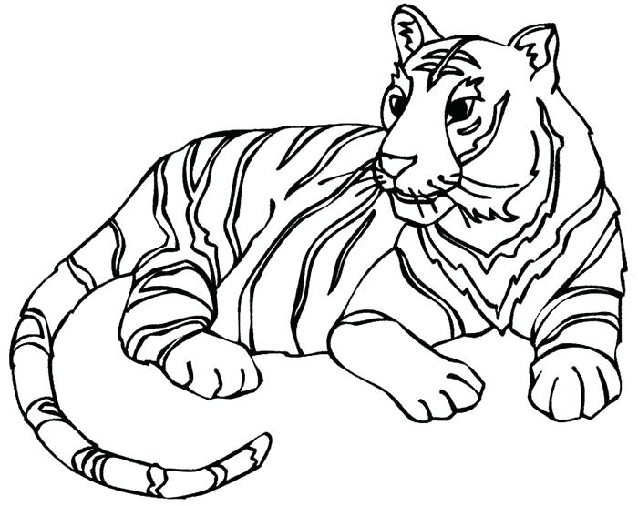 700x556 Tiger Face Outline Drawing The Best Ideas About Cartoon
