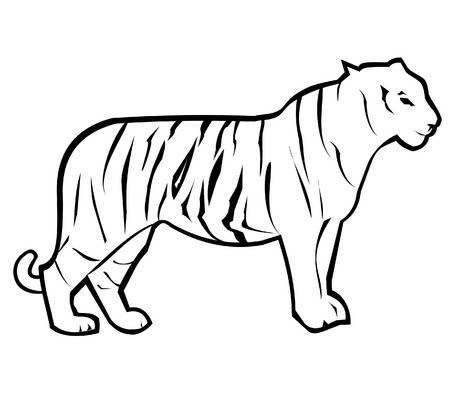 450x394 Tiger Outline