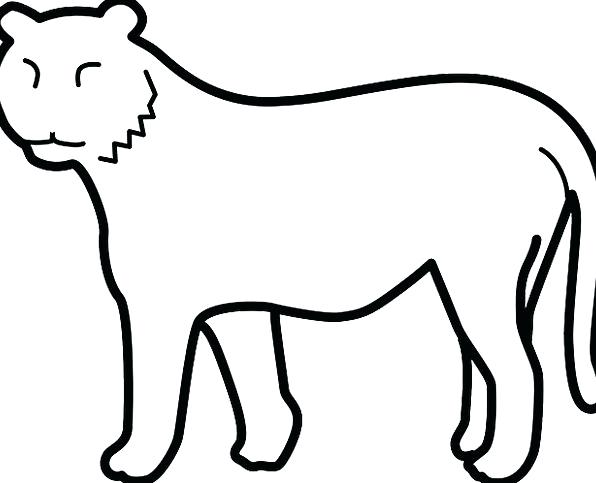596x483 Tiger Outline Clip Art Library Face Drawing Easy