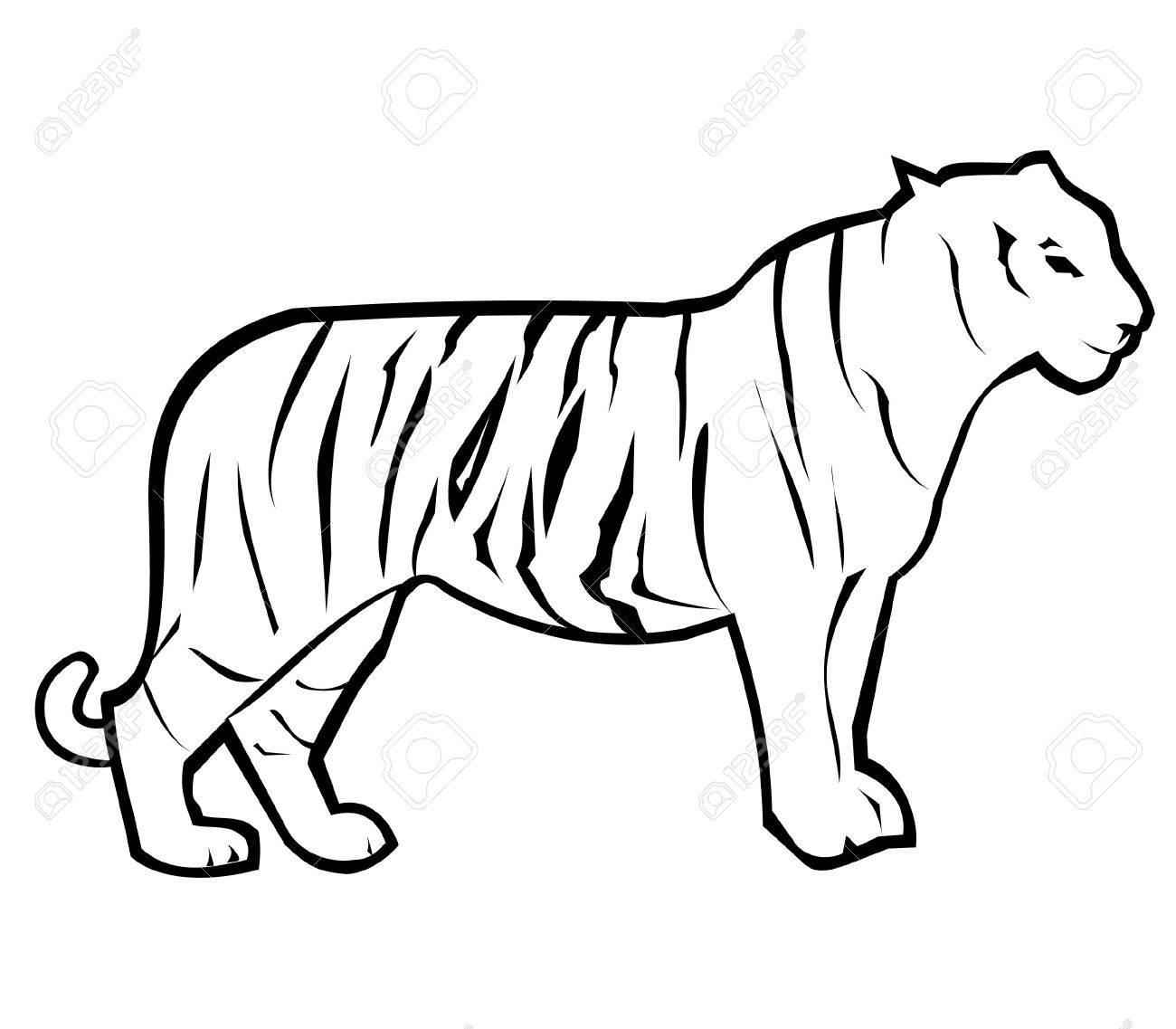 1300x1137 Tiger Outline