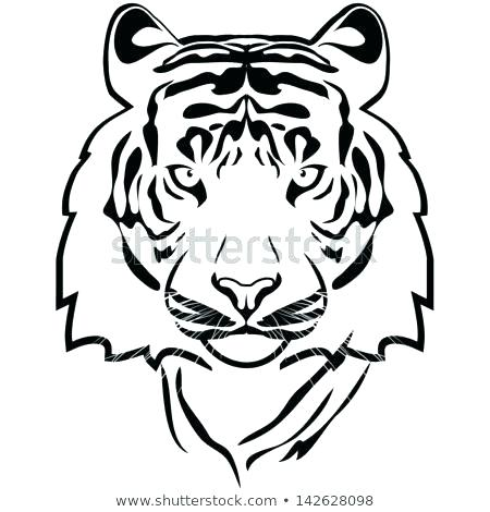 450x470 Tiger Outline Tattoo