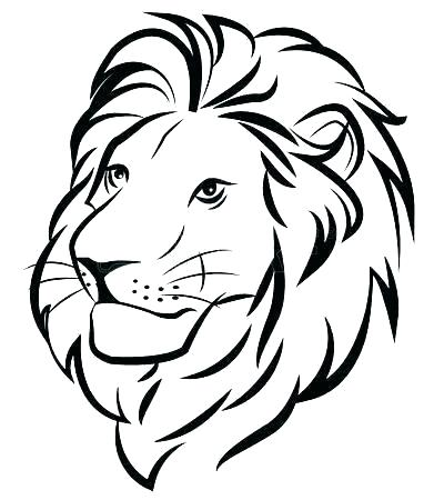 391x450 Lion Outline Drawing Lion Drawing Outline Tiger Or Lion Head