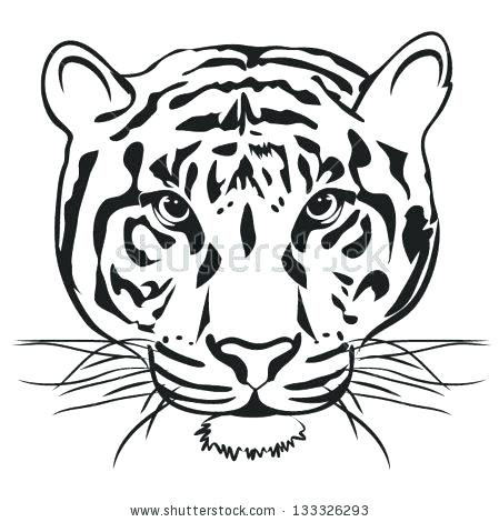 449x470 outline of tiger tiger outlines tiger outline drawing tiger face