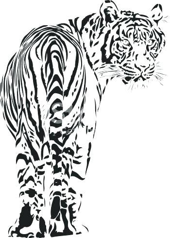 350x490 tiger face outline tiger outline outline drawing tiger outline