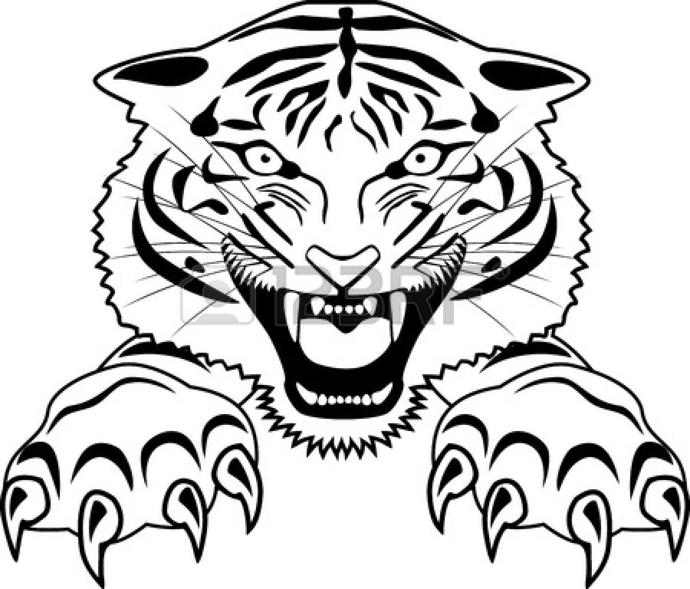 Tiger Head Line Drawing | Free download on ClipArtMag