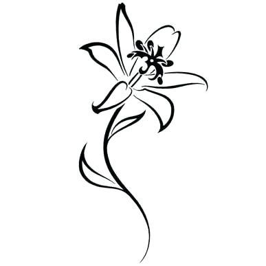 Tiger Lily Drawing
