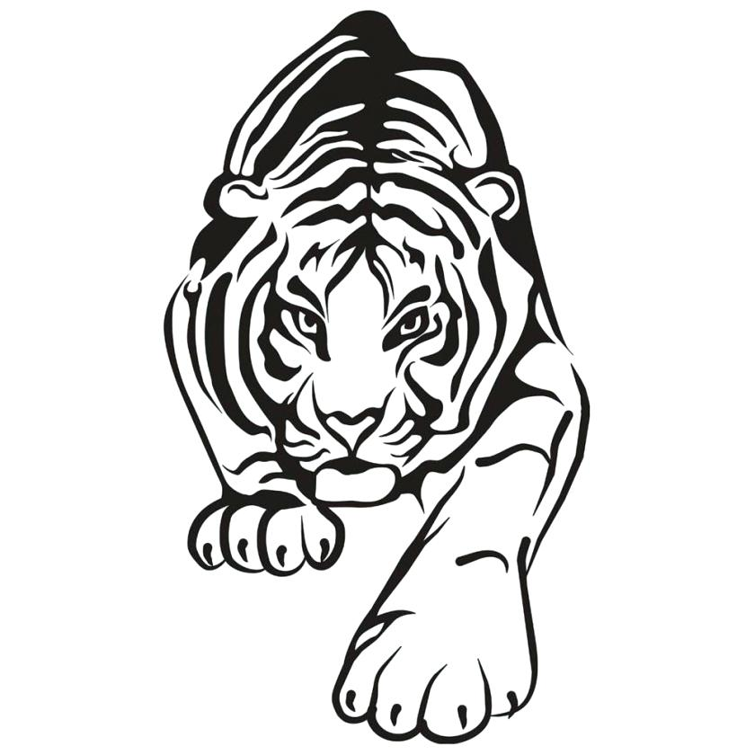840x840 Pleasing Coloring Pages Of A Tiger Delightful Coloring Pages