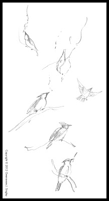 217x400 Queen Gwenevere's Ramblings Sketchy Sunday Tiny Upside Down Bird