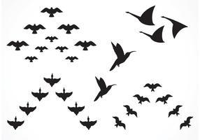 286x200 Bird Free Vector Art Free Downloadable